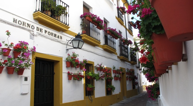 Get a feel for Andalucía in 8 days/7 nights